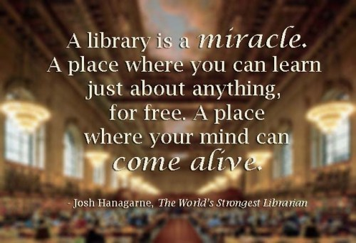 A library is a miracle